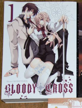 Bloody cross tome 1