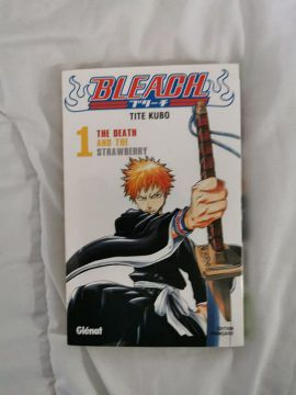 Bleach tome 1 [VF]