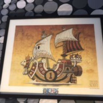 One Piece - Collector Artprint Thousand Sunny