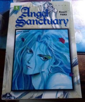 Angel Sanctuary Tome 5