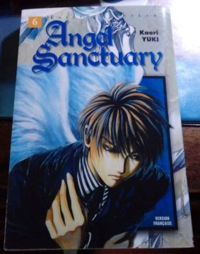 Angel Sanctuary Tome 6