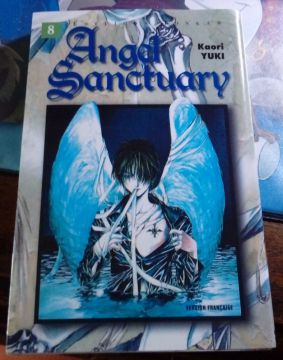 Angel Sanctuary Tome 8