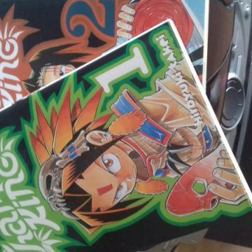 Shaman King tome 1 et 2