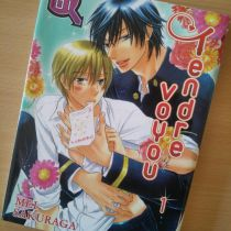 TENDRE VOYOU -TOME 1