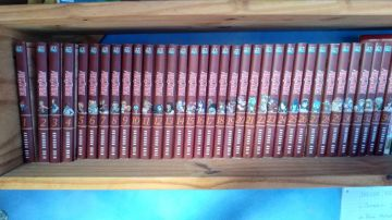 Fairy Tail (34 volumes)
